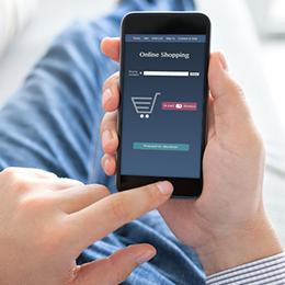 E-Commerce-System und Warenwirtschaft für Konsumgüter und Einzelhandel